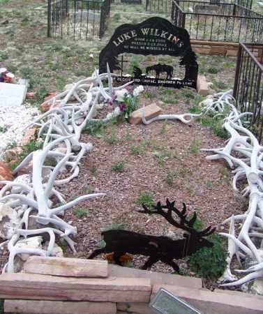 WILKINS, LUKE - Apache County, Arizona | LUKE WILKINS - Arizona Gravestone Photos
