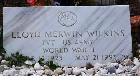 WILKINS, LLOYD MERWIN - Apache County, Arizona | LLOYD MERWIN WILKINS - Arizona Gravestone Photos