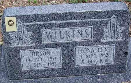 WILKINS, ORSON - Apache County, Arizona   ORSON WILKINS - Arizona Gravestone Photos
