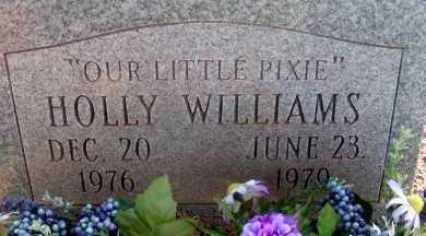 WILLIAMS, HOLLY - Apache County, Arizona | HOLLY WILLIAMS - Arizona Gravestone Photos