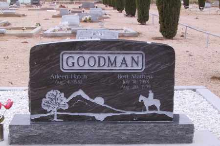 ARLENE, GOODMAN - Cochise County, Arizona | GOODMAN ARLENE - Arizona Gravestone Photos