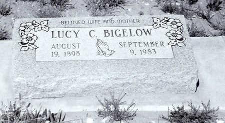 BIGELOW, LUCY - Cochise County, Arizona | LUCY BIGELOW - Arizona Gravestone Photos