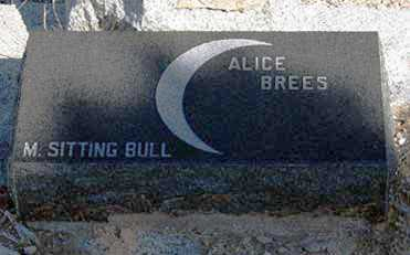 BREES, ALICE - Cochise County, Arizona | ALICE BREES - Arizona Gravestone Photos