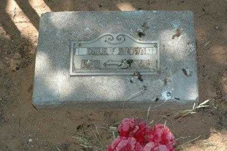 BROWN, DALE - Cochise County, Arizona | DALE BROWN - Arizona Gravestone Photos
