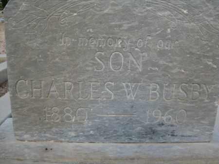 BUSBY, CHARLES W. - Cochise County, Arizona | CHARLES W. BUSBY - Arizona Gravestone Photos