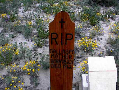 GALLASPY, FATHER - Cochise County, Arizona | FATHER GALLASPY - Arizona Gravestone Photos