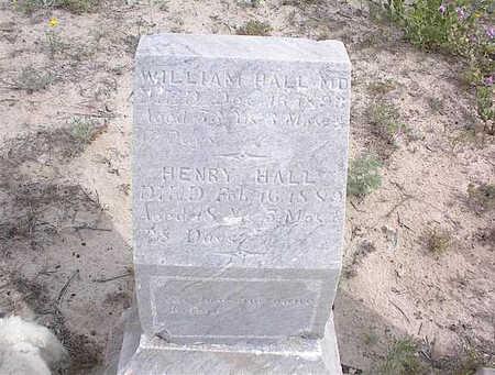 HALL, DR. WM. - Cochise County, Arizona | DR. WM. HALL - Arizona Gravestone Photos