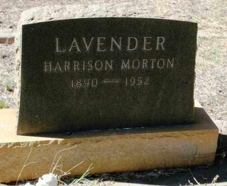 LAVENDER, HARRISON MORTON - Cochise County, Arizona | HARRISON MORTON LAVENDER - Arizona Gravestone Photos