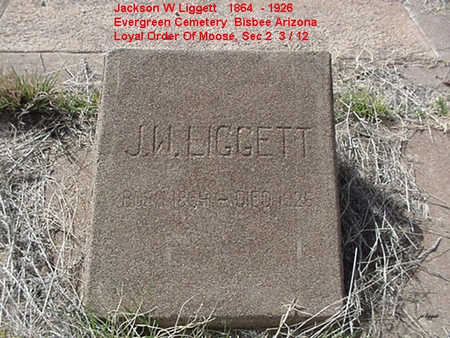 LIGGETT, JACKSON - Cochise County, Arizona | JACKSON LIGGETT - Arizona Gravestone Photos