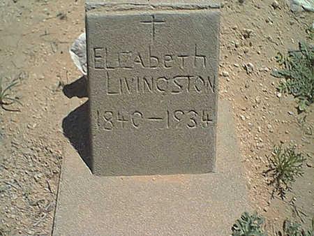 LIVINGSTON, ELEZEBETH - Cochise County, Arizona | ELEZEBETH LIVINGSTON - Arizona Gravestone Photos