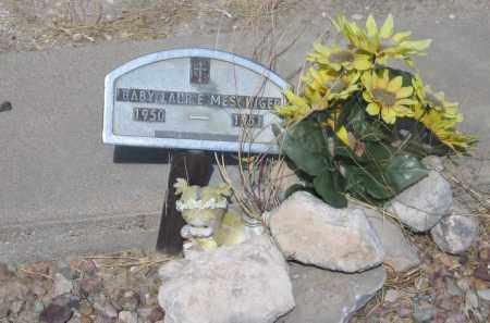 MESSINGER, LAURIE - Cochise County, Arizona | LAURIE MESSINGER - Arizona Gravestone Photos