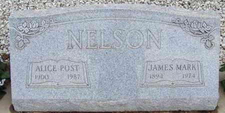 NELSON, JAMES MARK - Cochise County, Arizona   JAMES MARK NELSON - Arizona Gravestone Photos