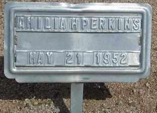 PERKINS, AMILIA - Cochise County, Arizona | AMILIA PERKINS - Arizona Gravestone Photos