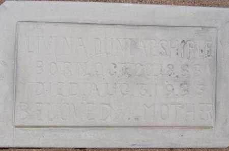 DUNLAP SHIRLEY, LIVINA - Cochise County, Arizona   LIVINA DUNLAP SHIRLEY - Arizona Gravestone Photos
