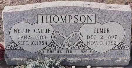 THOMPSON, ELMER - Cochise County, Arizona | ELMER THOMPSON - Arizona Gravestone Photos