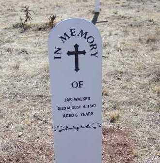 WALKER, JAMES - Cochise County, Arizona | JAMES WALKER - Arizona Gravestone Photos