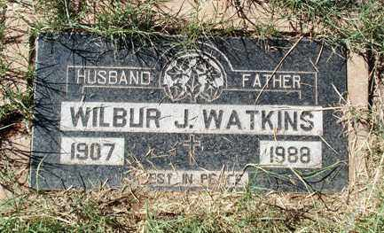 WATKINS, WILBUR J. - Cochise County, Arizona | WILBUR J. WATKINS - Arizona Gravestone Photos