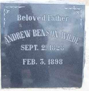 WILDE, ANDREW BENSON - Cochise County, Arizona | ANDREW BENSON WILDE - Arizona Gravestone Photos