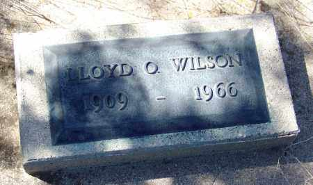 WILSON, LLOYD - Cochise County, Arizona | LLOYD WILSON - Arizona Gravestone Photos