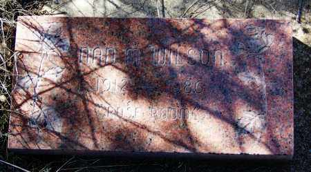 WILSON, NAN W - Cochise County, Arizona | NAN W WILSON - Arizona Gravestone Photos