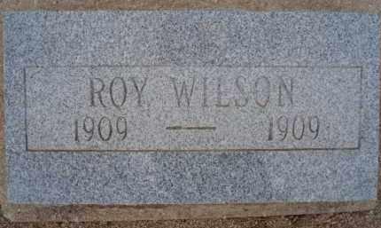WILSON, ROY - Cochise County, Arizona | ROY WILSON - Arizona Gravestone Photos