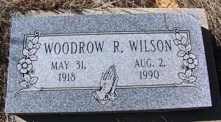 WILSON, WOODROW R - Cochise County, Arizona | WOODROW R WILSON - Arizona Gravestone Photos