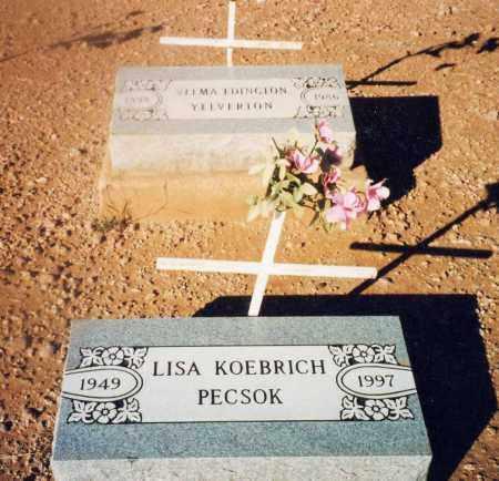 KOEBRICH PECSOK, LISA - Cochise County, Arizona | LISA KOEBRICH PECSOK - Arizona Gravestone Photos