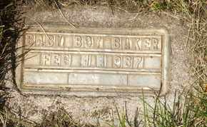 BAKER, BABY BOY - Coconino County, Arizona | BABY BOY BAKER - Arizona Gravestone Photos