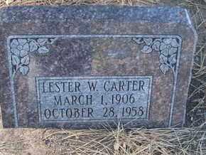 CARTER, LESTER W. - Coconino County, Arizona | LESTER W. CARTER - Arizona Gravestone Photos