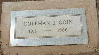 GOIN, COLEMAN J. - Coconino County, Arizona | COLEMAN J. GOIN - Arizona Gravestone Photos