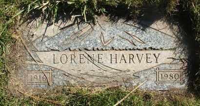 HARVEY, LORENE - Coconino County, Arizona | LORENE HARVEY - Arizona Gravestone Photos
