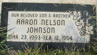 JOHNSON, AARON NELSON - Coconino County, Arizona | AARON NELSON JOHNSON - Arizona Gravestone Photos