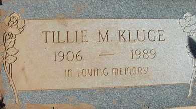 KLUGE, TILLIE M. - Coconino County, Arizona   TILLIE M. KLUGE - Arizona Gravestone Photos
