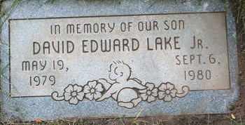 LAKE, JR., DAVID EDWARD - Coconino County, Arizona | DAVID EDWARD LAKE, JR. - Arizona Gravestone Photos