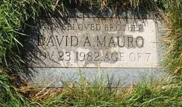 MAURO, DAVID A. - Coconino County, Arizona   DAVID A. MAURO - Arizona Gravestone Photos