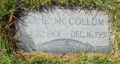 MCCOLLUM, IRENE - Coconino County, Arizona   IRENE MCCOLLUM - Arizona Gravestone Photos