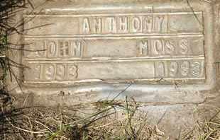 MOSS, ANTHONY JOHN - Coconino County, Arizona | ANTHONY JOHN MOSS - Arizona Gravestone Photos