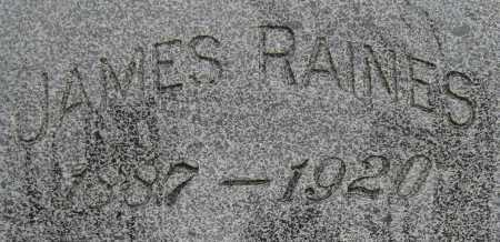 RAINES, JAMES - Coconino County, Arizona | JAMES RAINES - Arizona Gravestone Photos