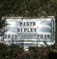 RIPLEY, MASYN - Coconino County, Arizona | MASYN RIPLEY - Arizona Gravestone Photos