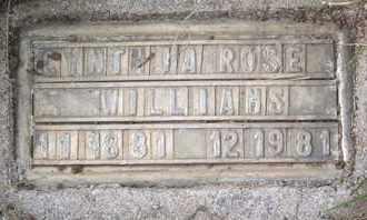 WILLIAMS, CYNTHIA ROSE - Coconino County, Arizona | CYNTHIA ROSE WILLIAMS - Arizona Gravestone Photos