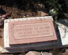 CHAVEZ AGUIRRE, CONCEPCION - Gila County, Arizona | CONCEPCION CHAVEZ AGUIRRE - Arizona Gravestone Photos