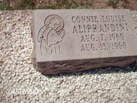 ALPRANDINI, CONNIE LOUISE - Gila County, Arizona | CONNIE LOUISE ALPRANDINI - Arizona Gravestone Photos