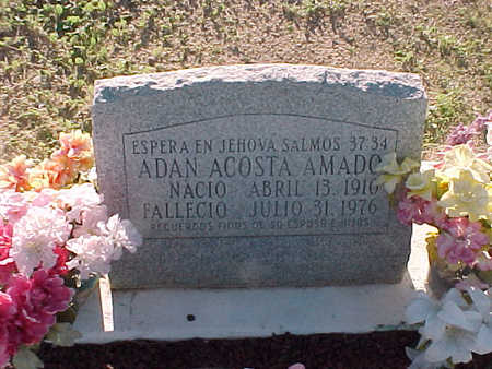 AMADO, ADAN ACOSTA - Gila County, Arizona   ADAN ACOSTA AMADO - Arizona Gravestone Photos
