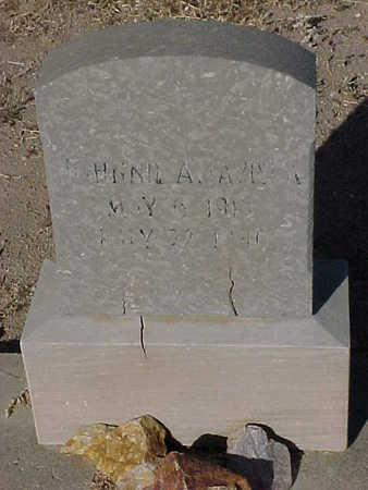 AMAVISCA, JOHNNIE - Gila County, Arizona   JOHNNIE AMAVISCA - Arizona Gravestone Photos