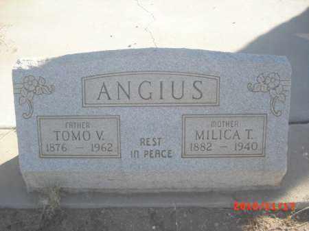 ANGIUS, MILICA T. - Gila County, Arizona | MILICA T. ANGIUS - Arizona Gravestone Photos