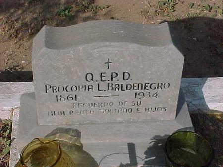 BALDENEGRO, PROCOPIA  L. - Gila County, Arizona | PROCOPIA  L. BALDENEGRO - Arizona Gravestone Photos