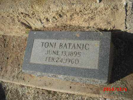 BATANIC, TONI - Gila County, Arizona | TONI BATANIC - Arizona Gravestone Photos