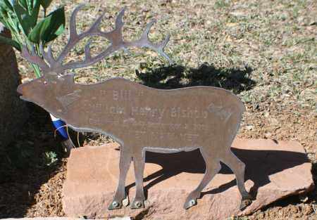 BISHOP, WILLIAM HENRY - Gila County, Arizona | WILLIAM HENRY BISHOP - Arizona Gravestone Photos