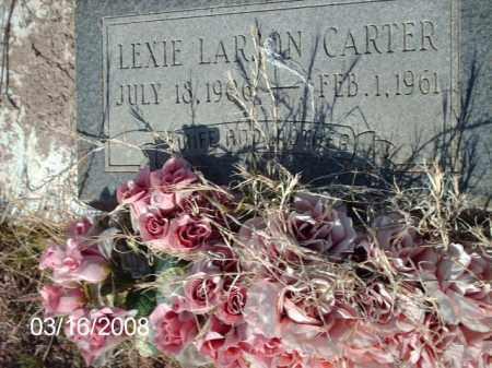 CARTER, LEXIE - Gila County, Arizona | LEXIE CARTER - Arizona Gravestone Photos