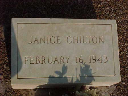 CHILTON, JANICE - Gila County, Arizona | JANICE CHILTON - Arizona Gravestone Photos